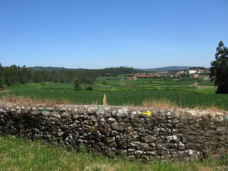 Camino Portugues_20100621_15_