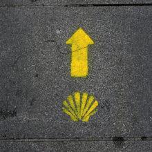Вслед за желтыми стрелками — 2010. Camino Portugues, часть 1.